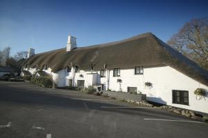 The Cott Inn (34 of 69)