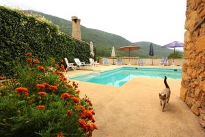 Gîte l'Ecluse au Soleil, Holiday homes  Sougraigne - big - 33