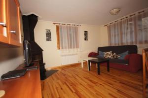 Ramonot treinta y tres, Appartamenti  Benasque - big - 2