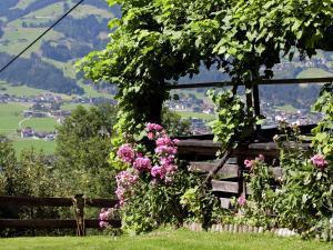 Wasserfall, Holiday homes  Hart im Zillertal - big - 22