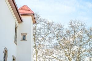 Borralha Guest House, Panziók  Vila Real - big - 79