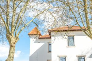 Borralha Guest House, Bed and Breakfasts  Vila Real - big - 89