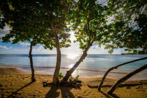 East Winds St. Lucia, Penziony – hostince  Gros Islet - big - 31