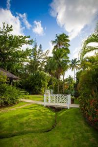 East Winds St. Lucia, Penziony – hostince  Gros Islet - big - 25