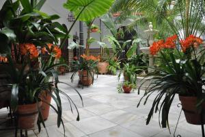 Hotel Casa de los Azulejos (2 of 44)