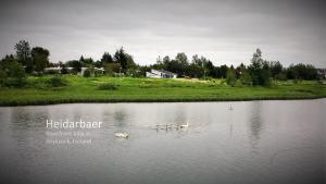 obrázek - Riverfront Villa in Reykjavik