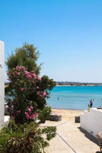 Thomais Studios, Apartmány  Naxos Chora - big - 32