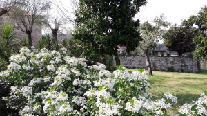 Casa D`Auleira, Farm stays  Ponte da Barca - big - 54