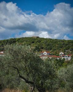 Klinci Village Resort, Aparthotely  Luštica - big - 43