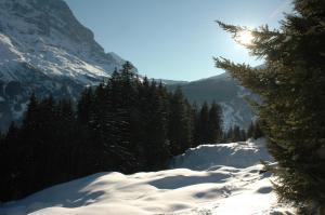 Alpenhof, Szállodák  Grindelwald - big - 54