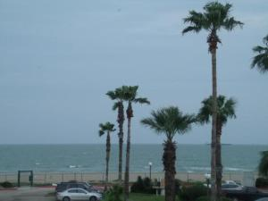obrázek - Corpus Christi Beach Condo 3140