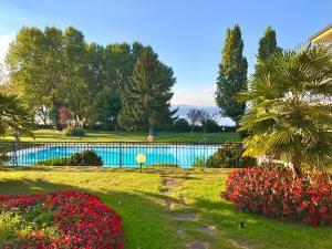 Arpa Luxury Apartment - AbcAlberghi.com