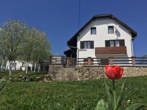 Albergues - Guest House Aurora