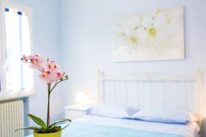 Residence Kimba - AbcAlberghi.com