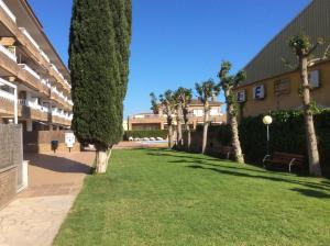 Mar Apartment, Apartments  L'Estartit - big - 32