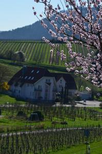 Castell Hotel & Restaurant - Annweiler am Trifels