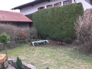 Evi's Seehäusl, Ferienhäuser  Übersee - big - 6