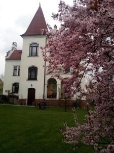 Auberges de jeunesse - Villa Liduška