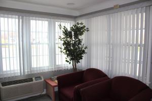Elm Motel - Accommodation - Westfield