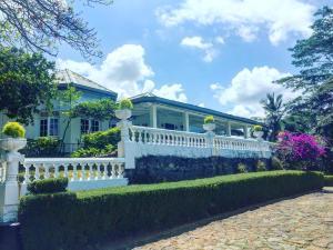 Ashburnham Tea Estate - Elkaduwa