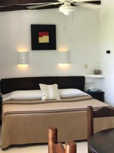 Beachfront Hotel La Palapa - Adults Only, Hotely  Ostrov Holbox - big - 32