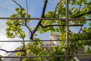 Hotel Dost, Hotely  Marmaris - big - 60