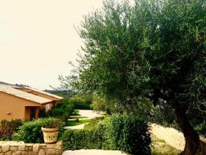 Villa Cattleya, Dovolenkové domy  Campofelice di Roccella - big - 26