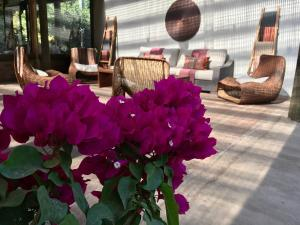 Hotel Casa De Campo, Hotels  Santa Cruz - big - 58