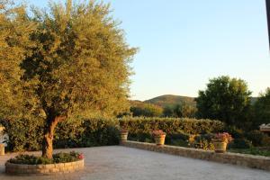 Villa Cattleya, Dovolenkové domy  Campofelice di Roccella - big - 19