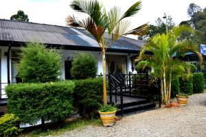 Bearwell Resort