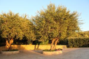 Villa Cattleya, Dovolenkové domy  Campofelice di Roccella - big - 36