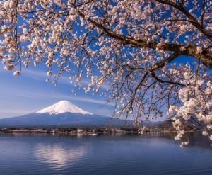 HOTEL MYSTAYS Fuji Onsen Resort, Hotely  Fudžijošida - big - 31