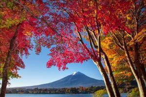 HOTEL MYSTAYS Fuji Onsen Resort, Hotely  Fudžijošida - big - 40