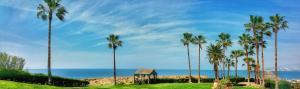 Cynthiana Beach Hotel (22 of 64)