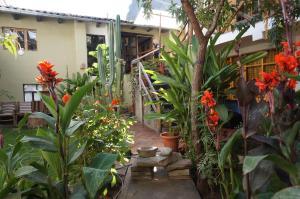 Hostel Andenes, Hostelek  Ollantaytambo - big - 63