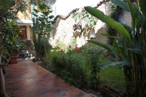 Hostel Andenes, Hostelek  Ollantaytambo - big - 100