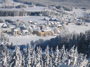 Hotel Rockenschaub - Mühlviertel, Hotels  Liebenau - big - 50