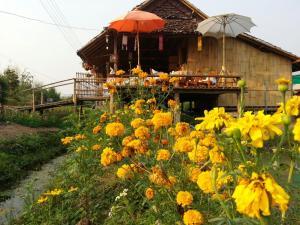 Tulip Resort Pai - Pang Mapha