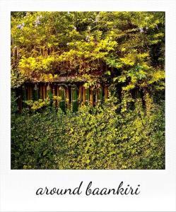 Baankiri, Vendégházak  Csiangmaj - big - 34