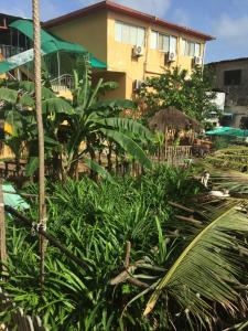 China Town Guest House, Hotel  Freetown - big - 15