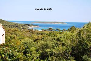 """Location gîte, chambres d'hotes Residence """"U LATONU"""" dans le département Corse du Sud 2a"""