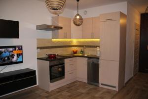 Apartment Wielicka Cracow