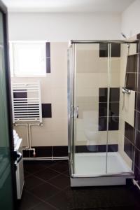 Aparthotel Metropol, Residence  Iaşi - big - 36