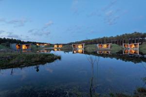 Location gîte, chambres d'hotes Relais du Silence Les Échasses Golf & Surf Eco Lodge dans le département Landes 40