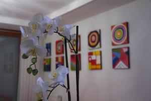 obrázek - Alba Villa 2
