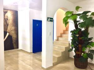 Hostel Manik, Hostels - Chetumal