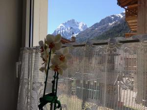 Garnì Serena - Accommodation - Canazei di Fassa