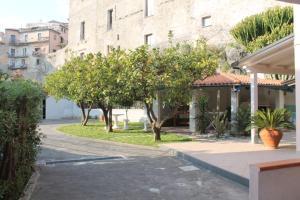 obrázek - The Lemon Tree House