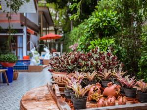 Hetai Boutique House, Hotel  Chiang Mai - big - 37