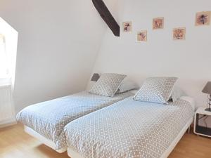 Appartement 5 chambres en hyper centre ville de Colmar